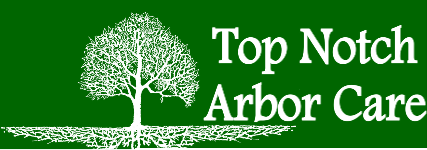 Top Notch Arbor Care