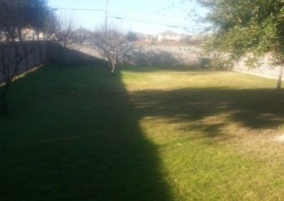 Yard mowed and edged