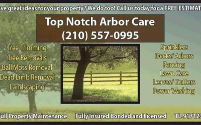 Free Estimates From Top Notch Arbor Care