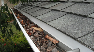 Clean Gutters in San Antonio